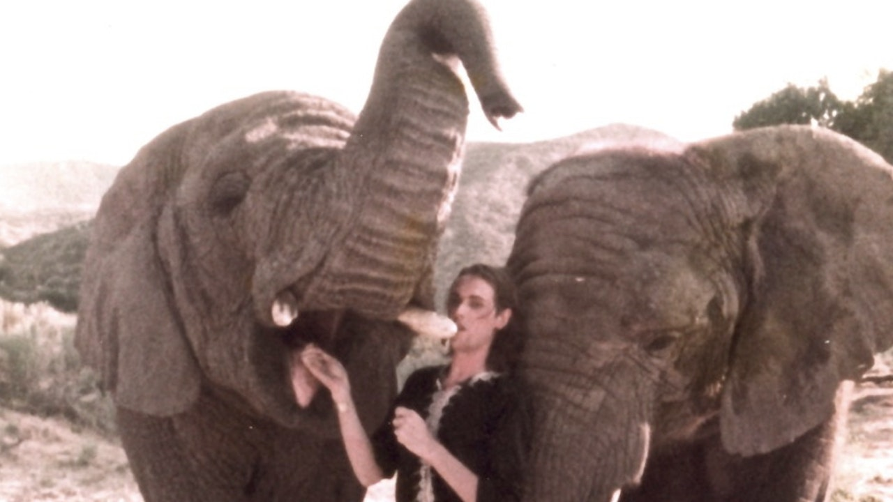 TIM POPE/THE CURE 'ELEPHUNTS'  B-SIDE