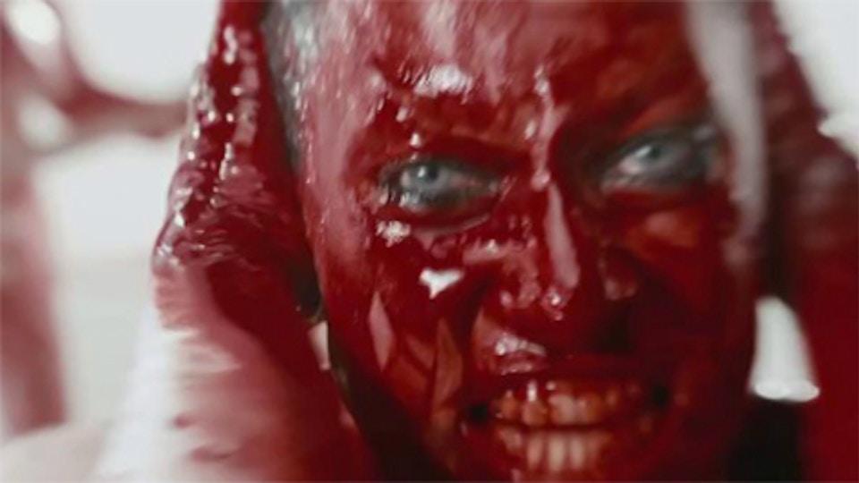 Amanda Palmer 'Killing Type'