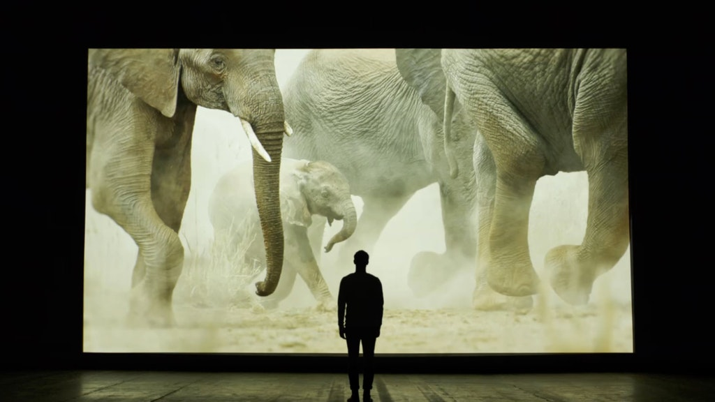 WWF - Will Young 'What The World Needs Now'