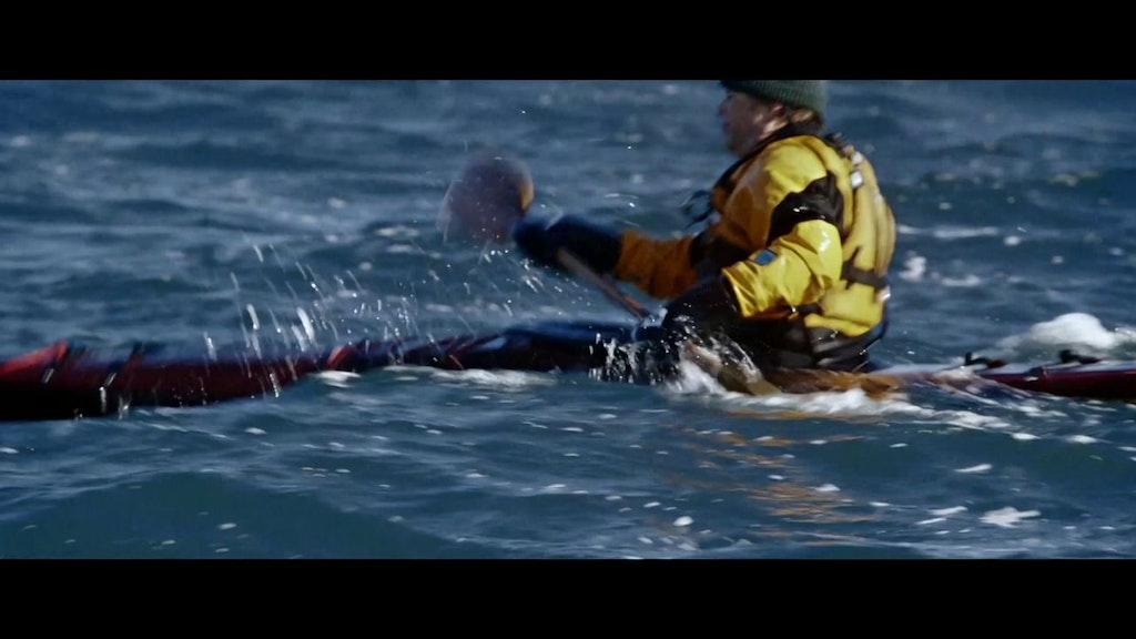 Persol 'Guillemot Kayaks'