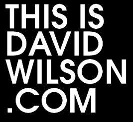 THISISDAVIDWILSON.COM