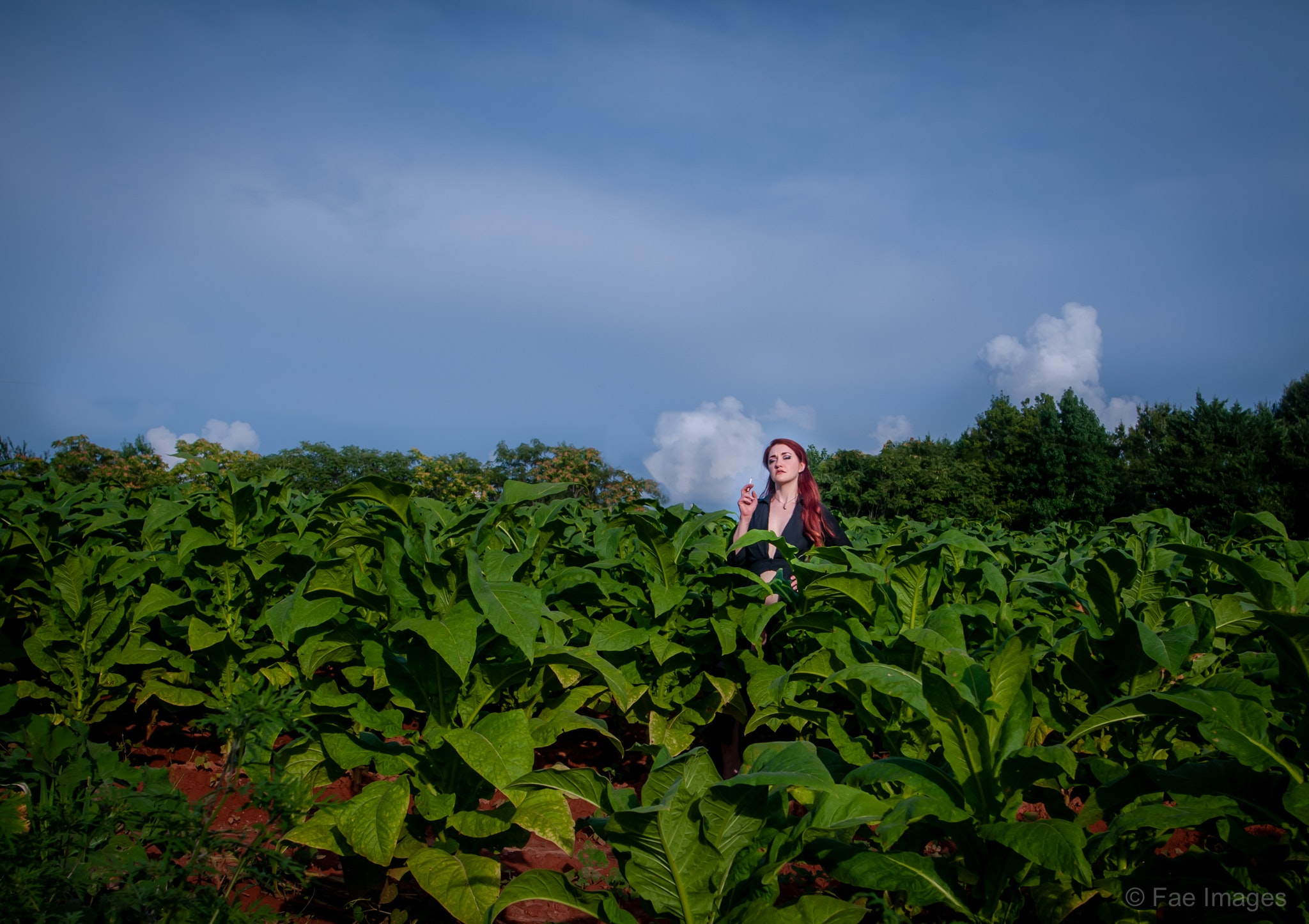 Fae Images - Susan-tobacco-web-1