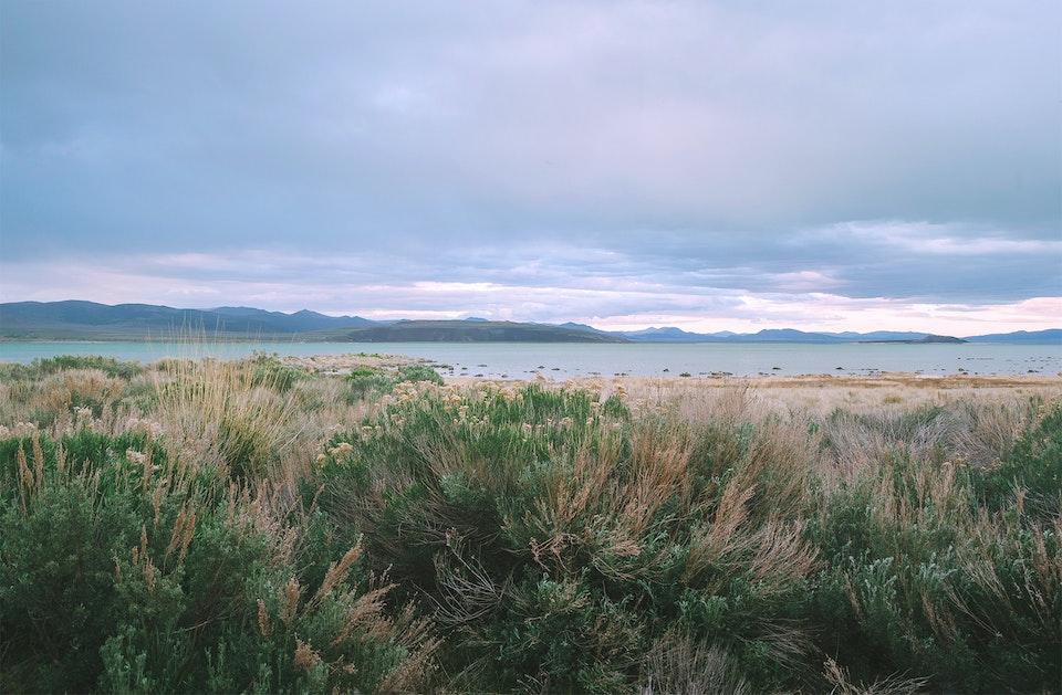 new - <b>forgotten shores</b> mono lake, ca