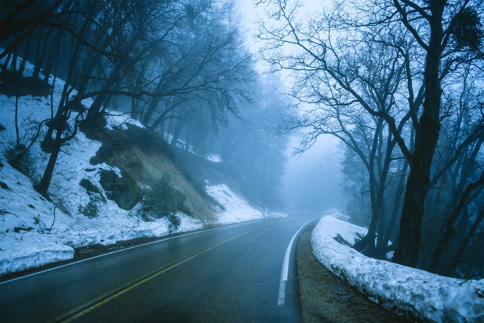 2020 - <b>foggy road</b> sequoia national park, ca
