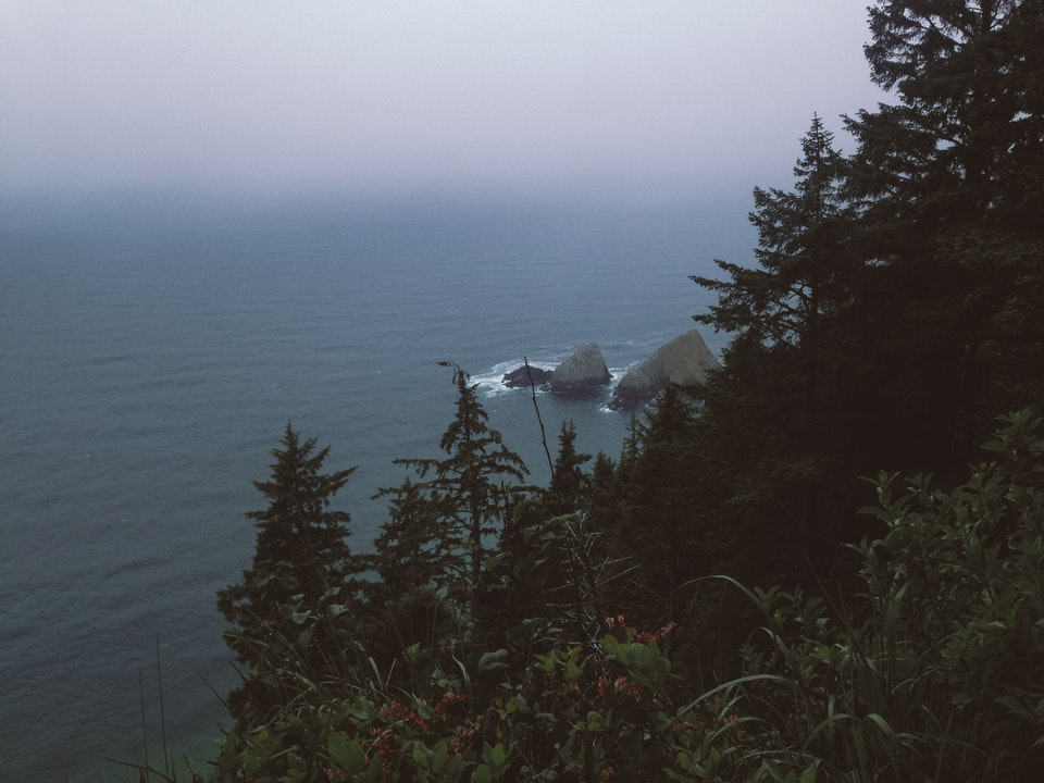 Phone - Coastal Mist; Pacific Crest Trail, OR