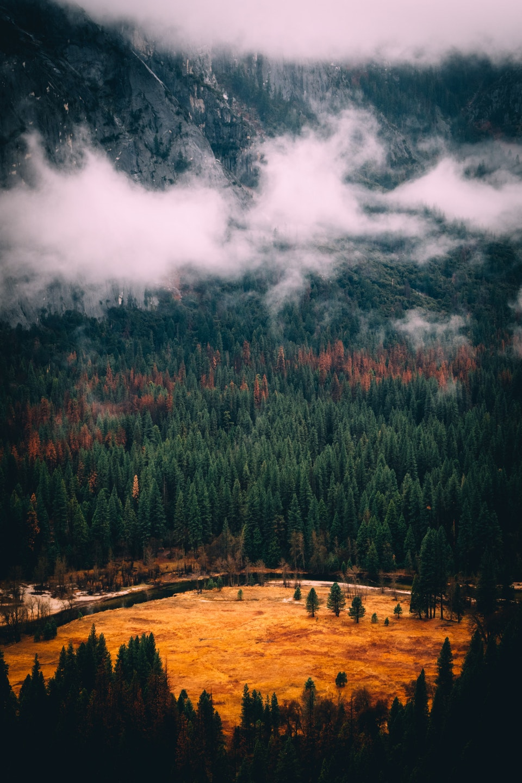 2018 - <b>yosemist</b> yosemite valley, ca