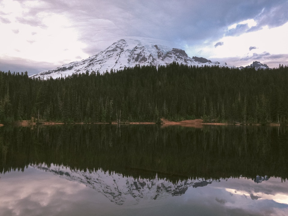 Phone - Still Dreaming; Reflection Lake, Mount Rainier National Park, WA