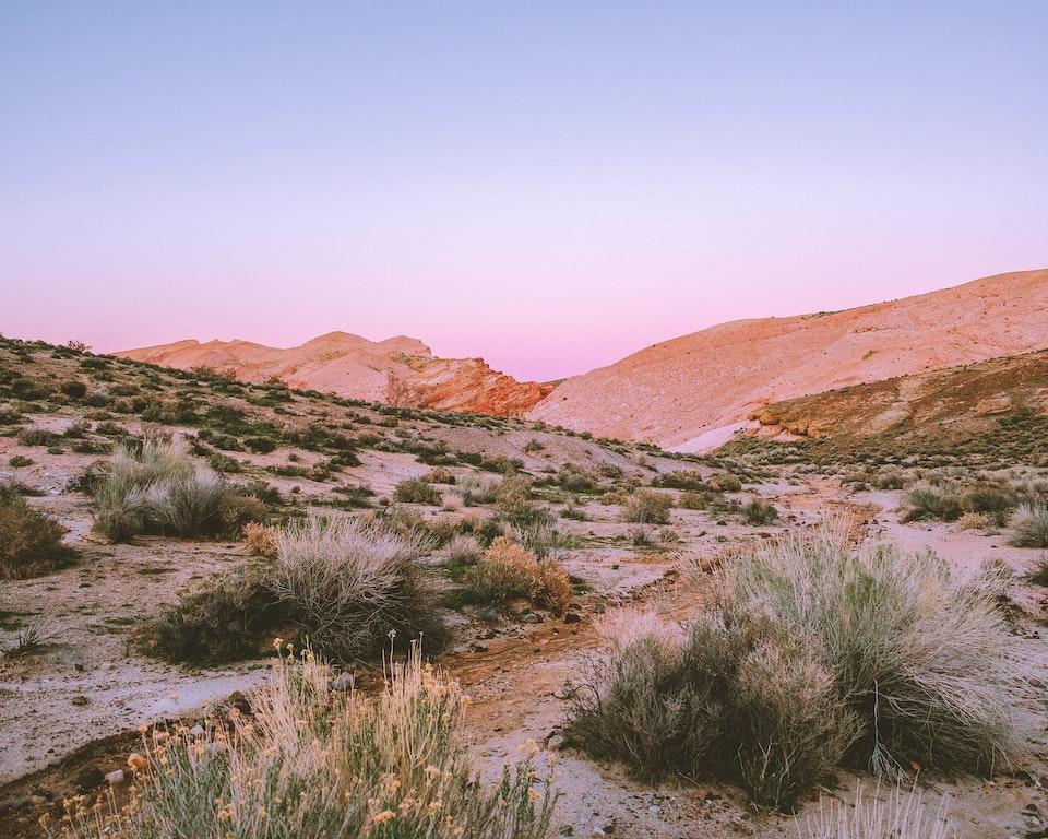 red rock canyon - <b>return of spring</b>