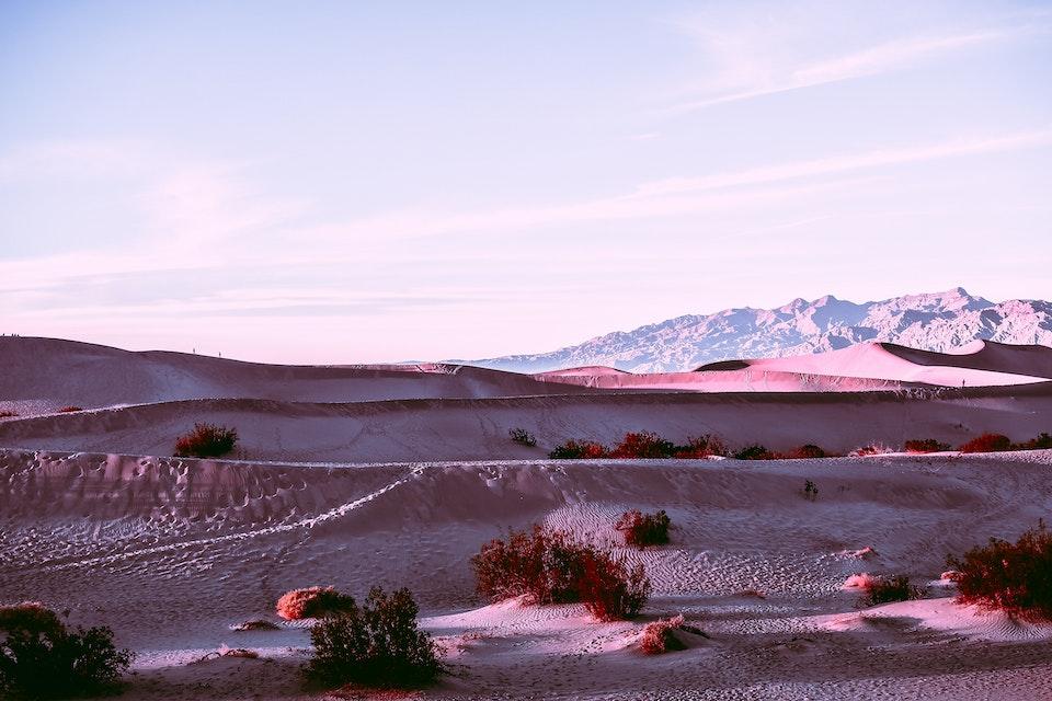 2019 - <b>dusky desert 4</b> death valley national park, ca