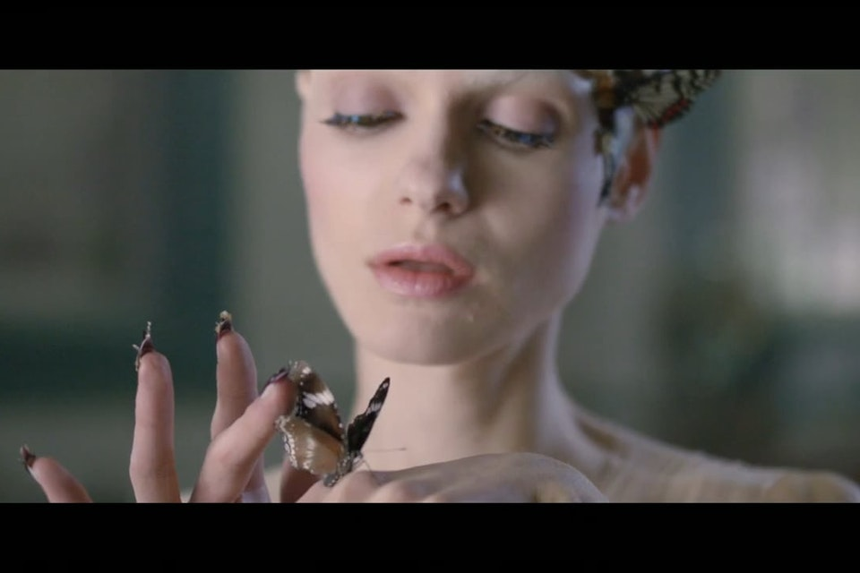 L'oreal | Butterfly
