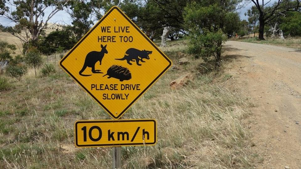 mare TV: Tasmanien - Australiens größte Insel