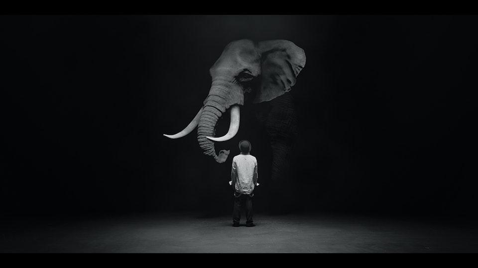 The Dog & The Elephant