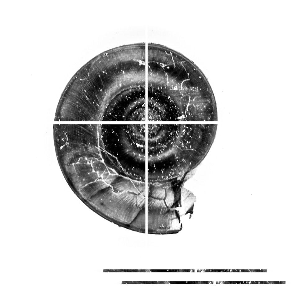 artefact-7 -