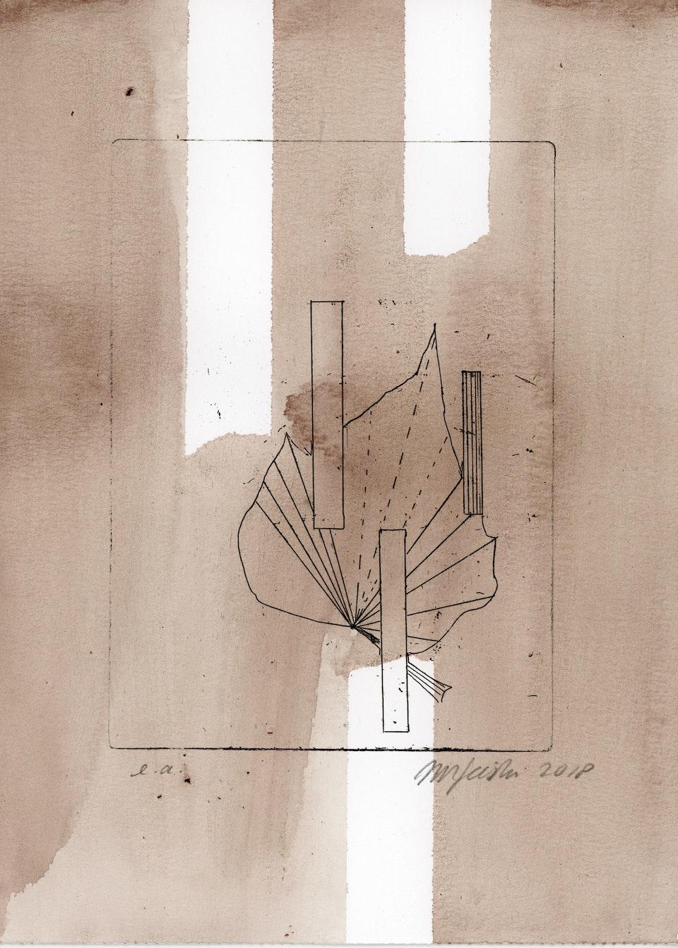blad klimop-8 -