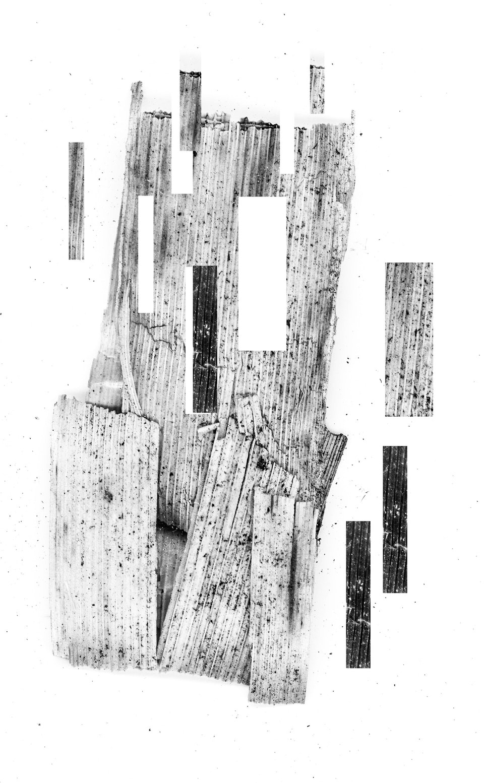 artefact-6 -