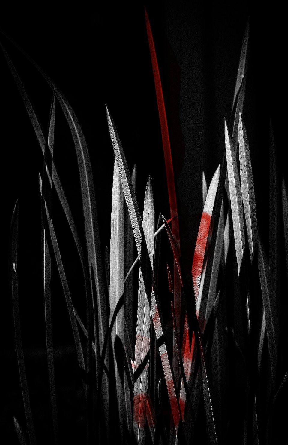 Vurige tongen-6 -
