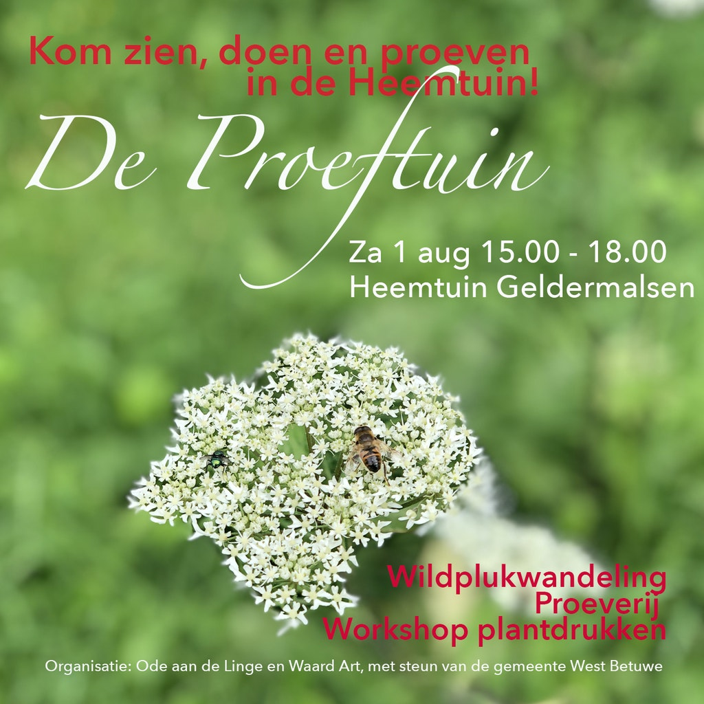 Workshop plantdrukken in de Heemtuin | 1 aug 2020