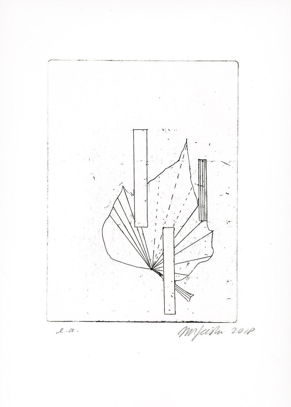 blad klimop-7 -