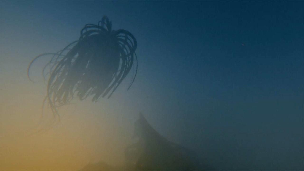 Björk - Notget 'VR'