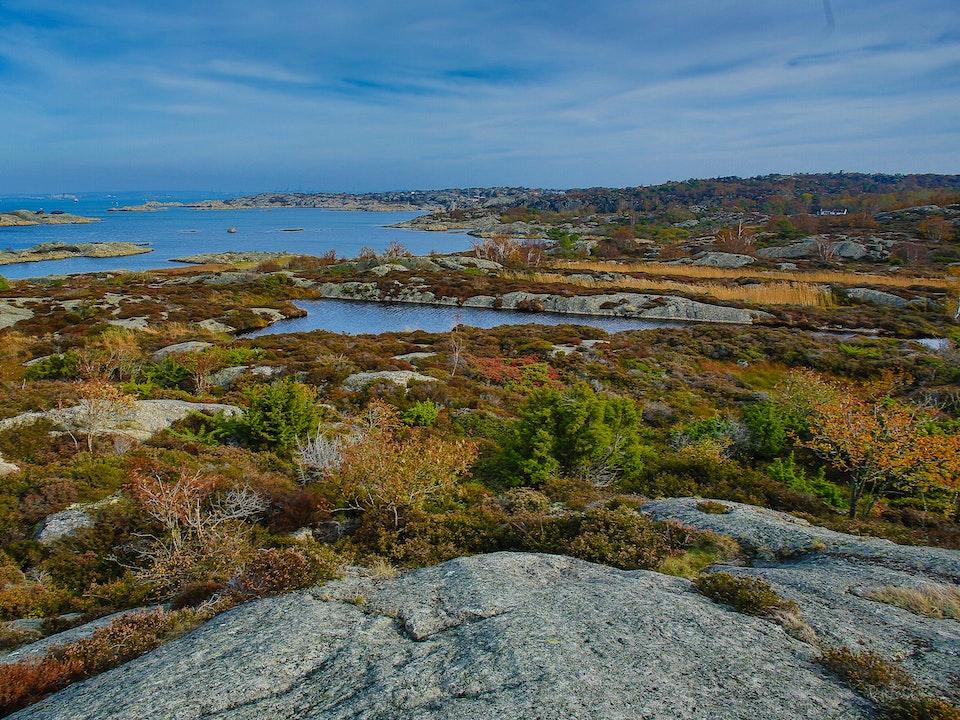 A Tog's Trek - Brännö Island