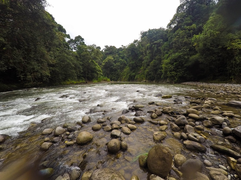 A Tog's Trek - Rafting the Pacuare River