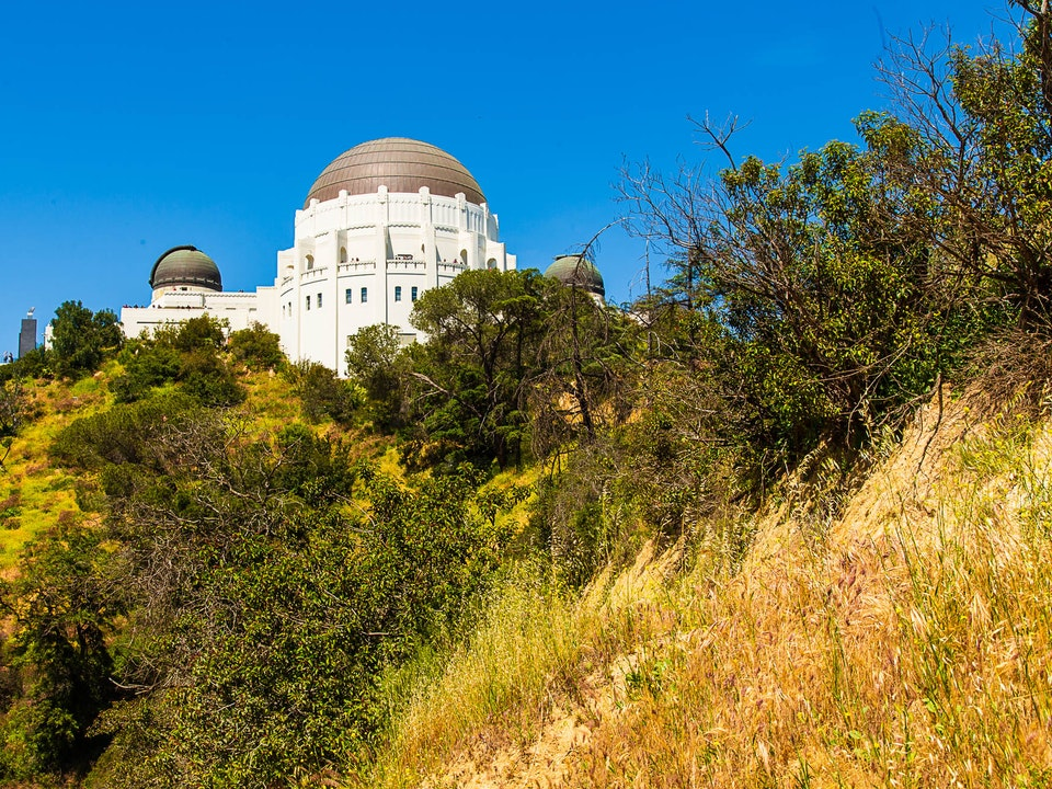 A Tog's Trek - Griffith Observatory, Los Angeles