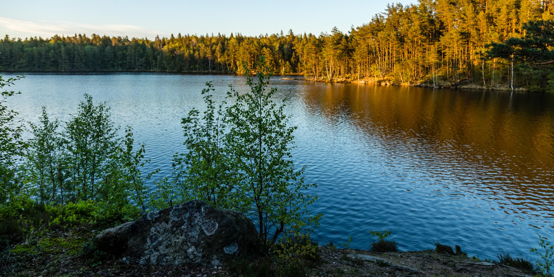 Stora Kroksjön i Vättlefjälls Naturreservat
