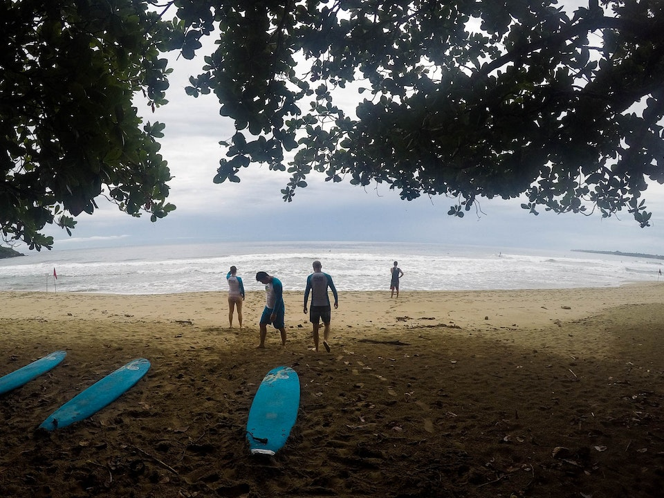 A Tog's Trek - Learning to surf