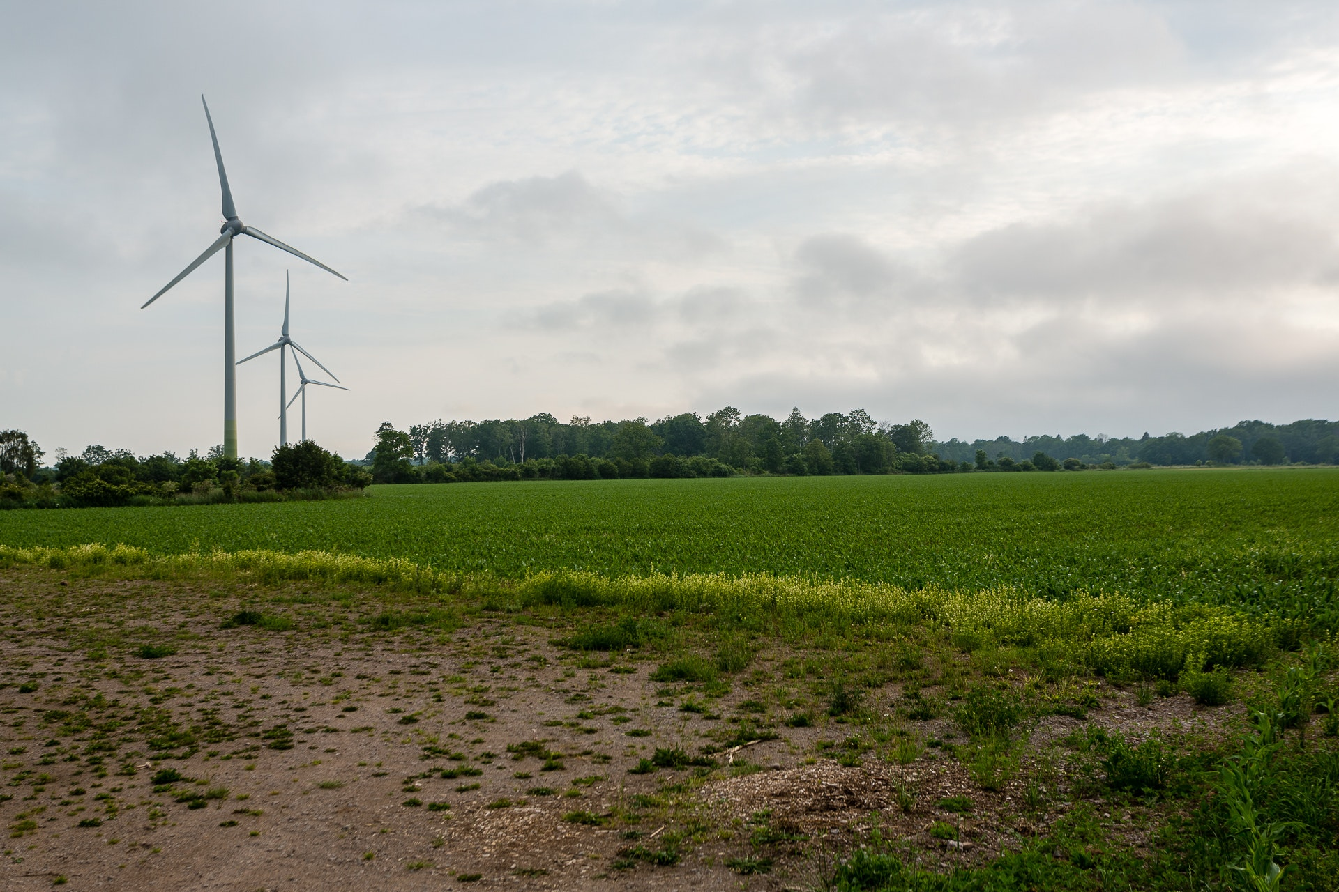 Modern Windmills of Öland