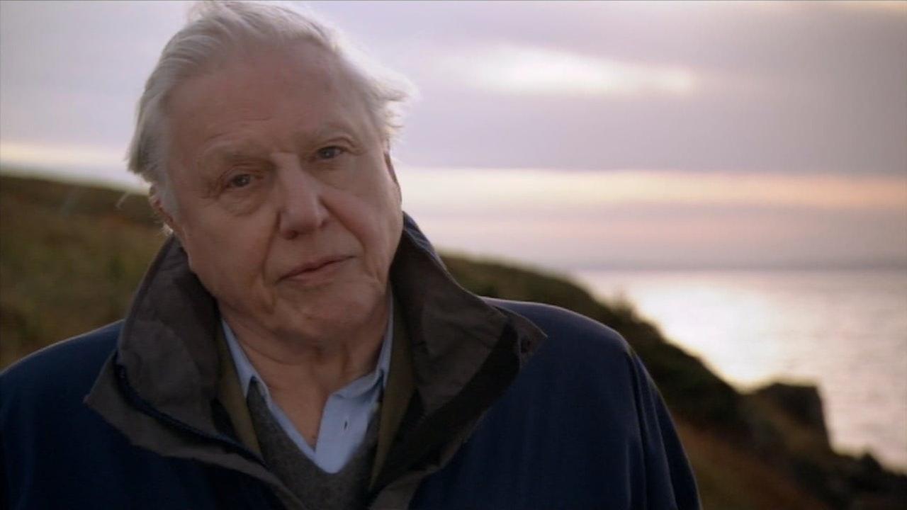 David Attenborough's First Life: Arrival