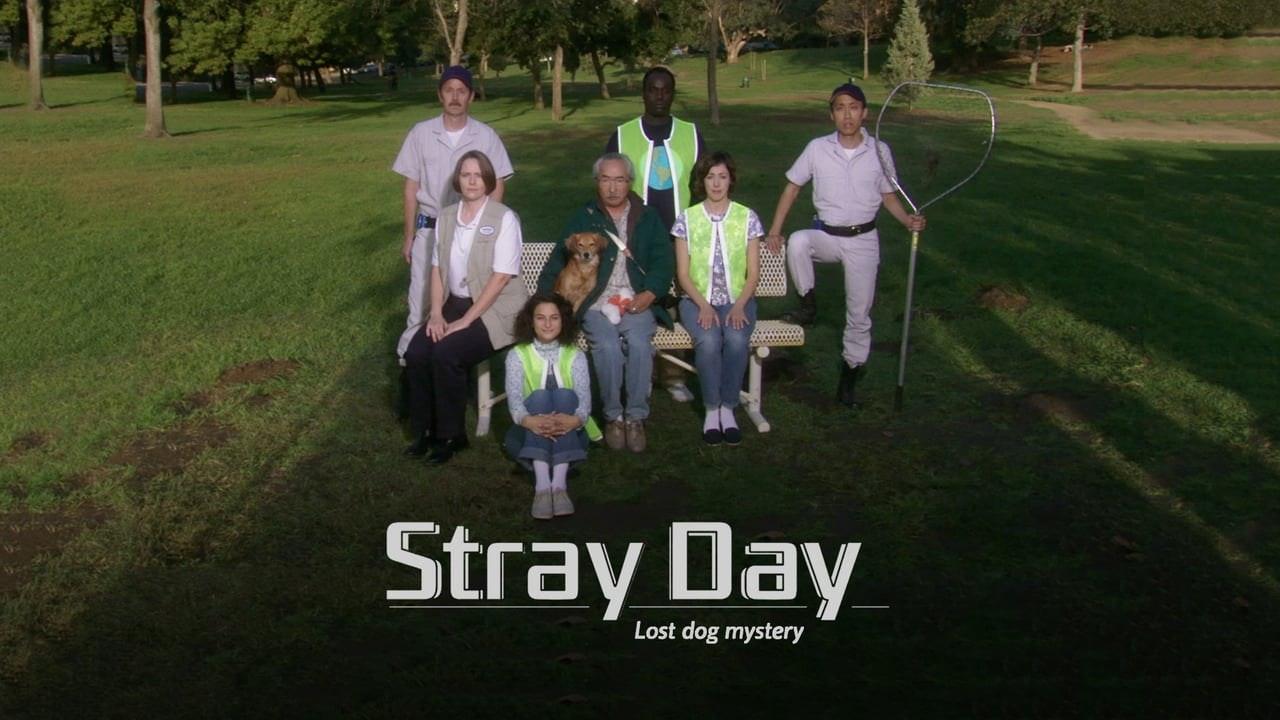 Stray Day