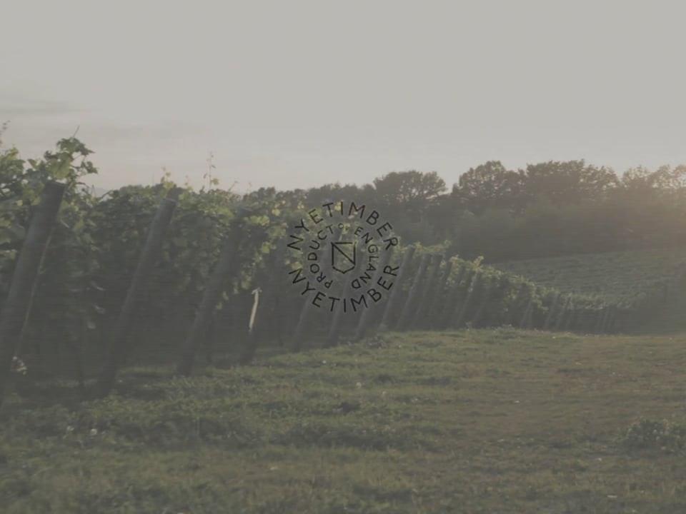 nyetimber english sparkling wine
