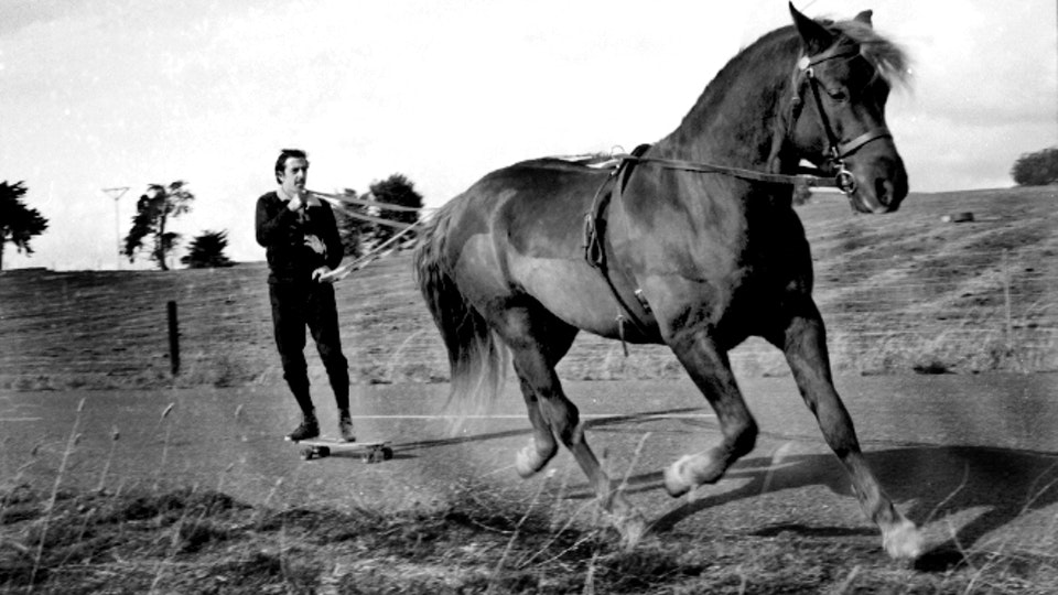Machotaildrop - frank-horse-2