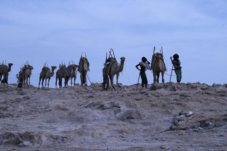 Djibouti  - 162