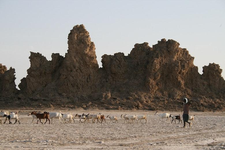 Djibouti  - 086