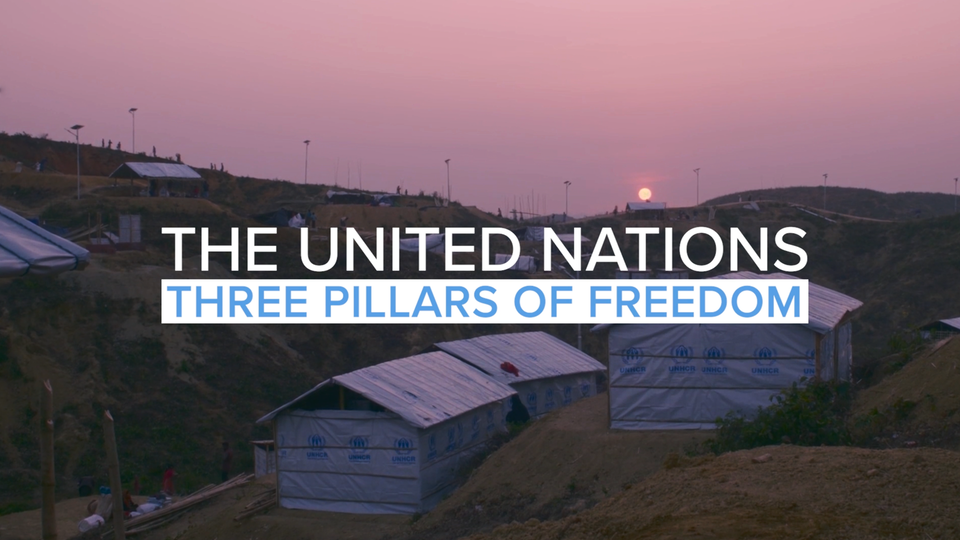 UNITED NATIONS | 'WTP Film Festival' (Trailer)