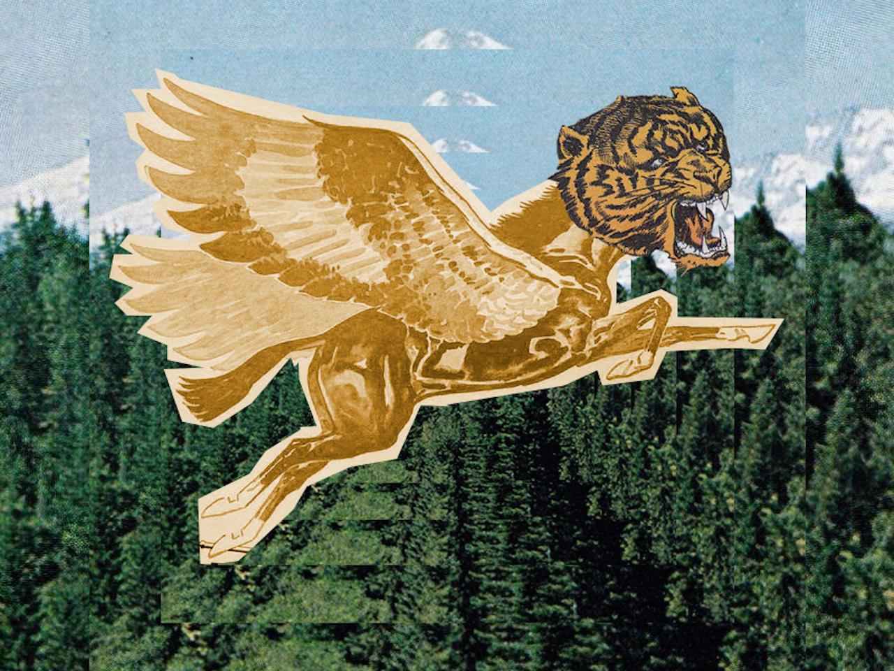 Tigre rumbo al Polo Norte