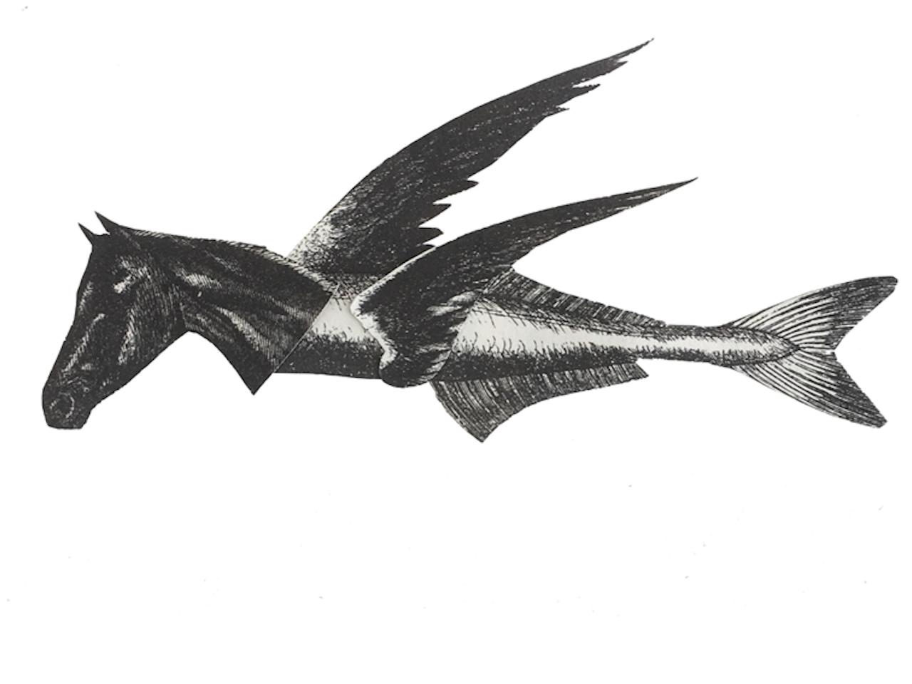 Caballo de mar volador