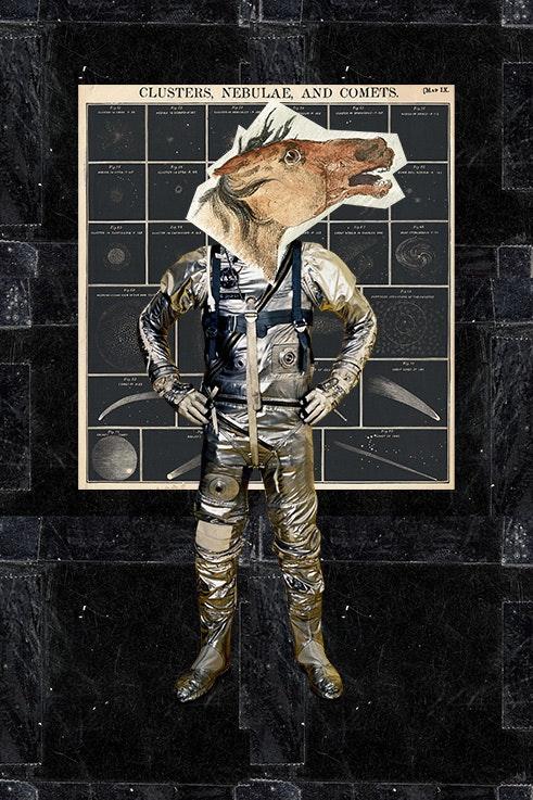 Como caballos locos de espacio