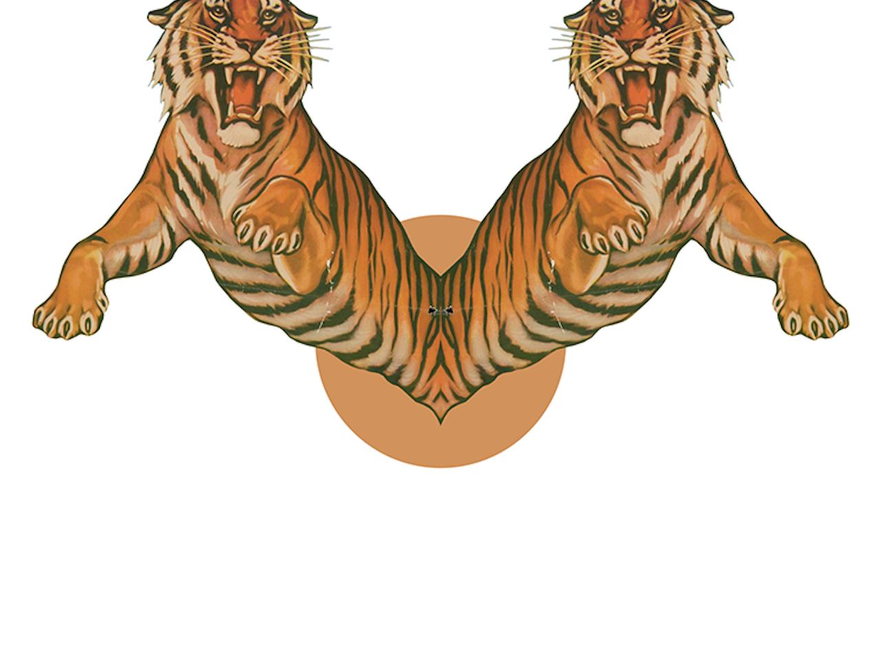 El jardín de los tigres que se bifurcan