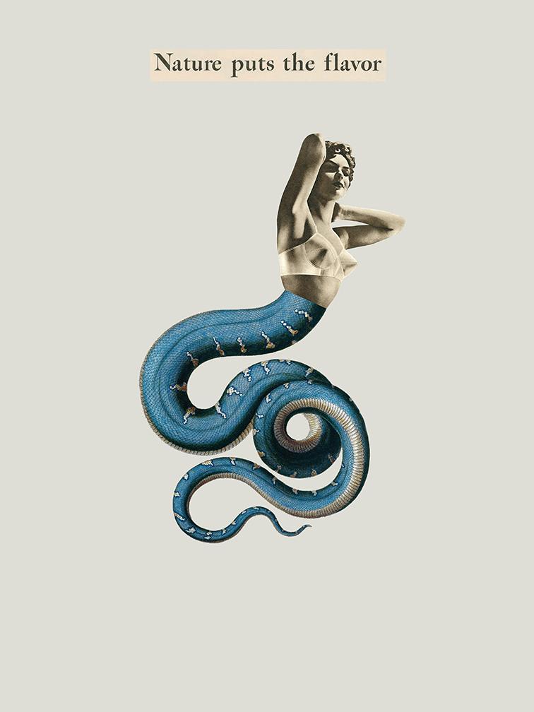 Medusa de ojos azules