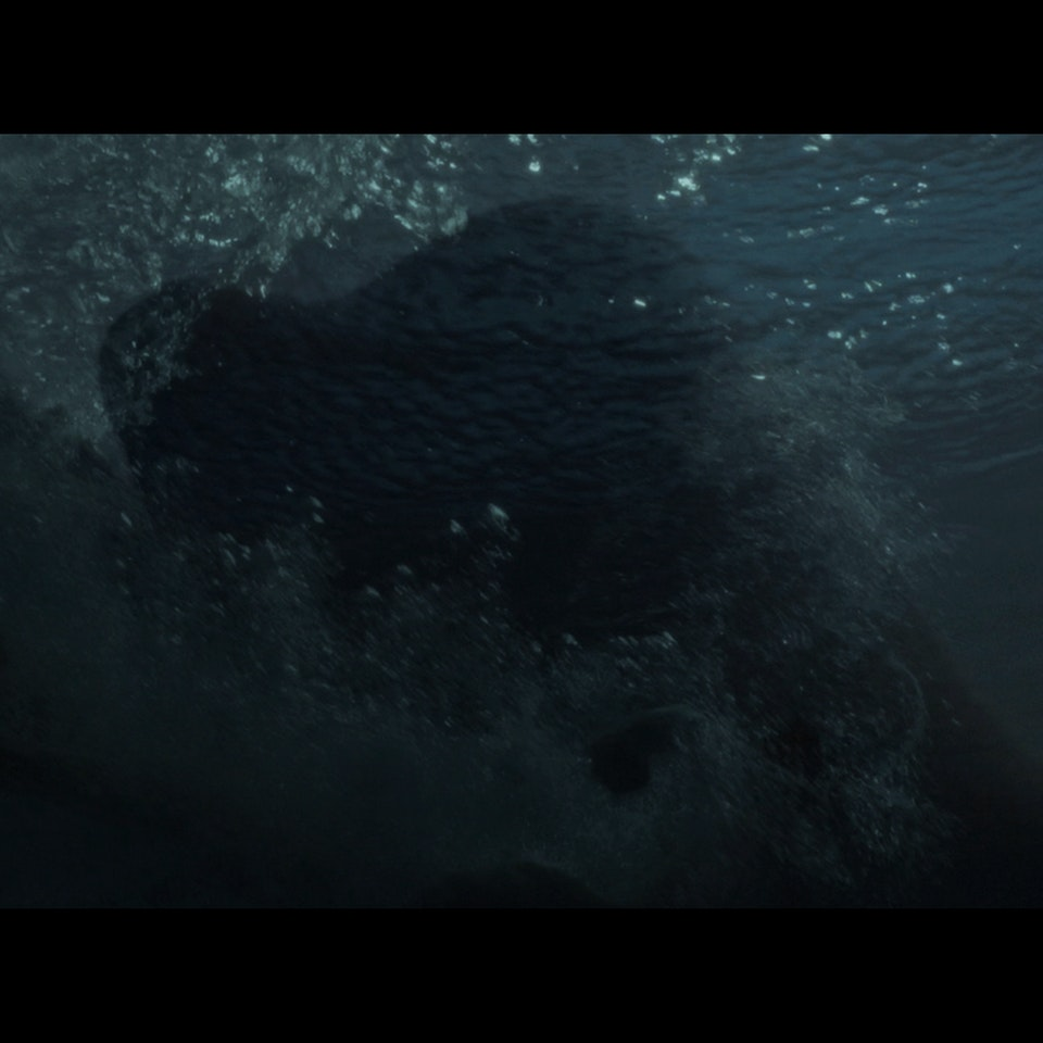 THE AGENCY (2018) - narrative short Untitled_1.8.248