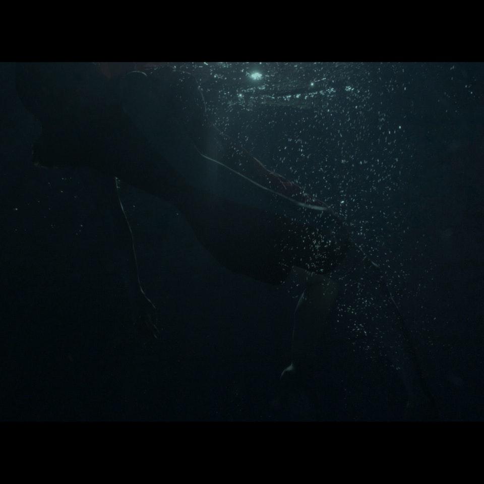 FILM STILLS - Untitled_1.8.263