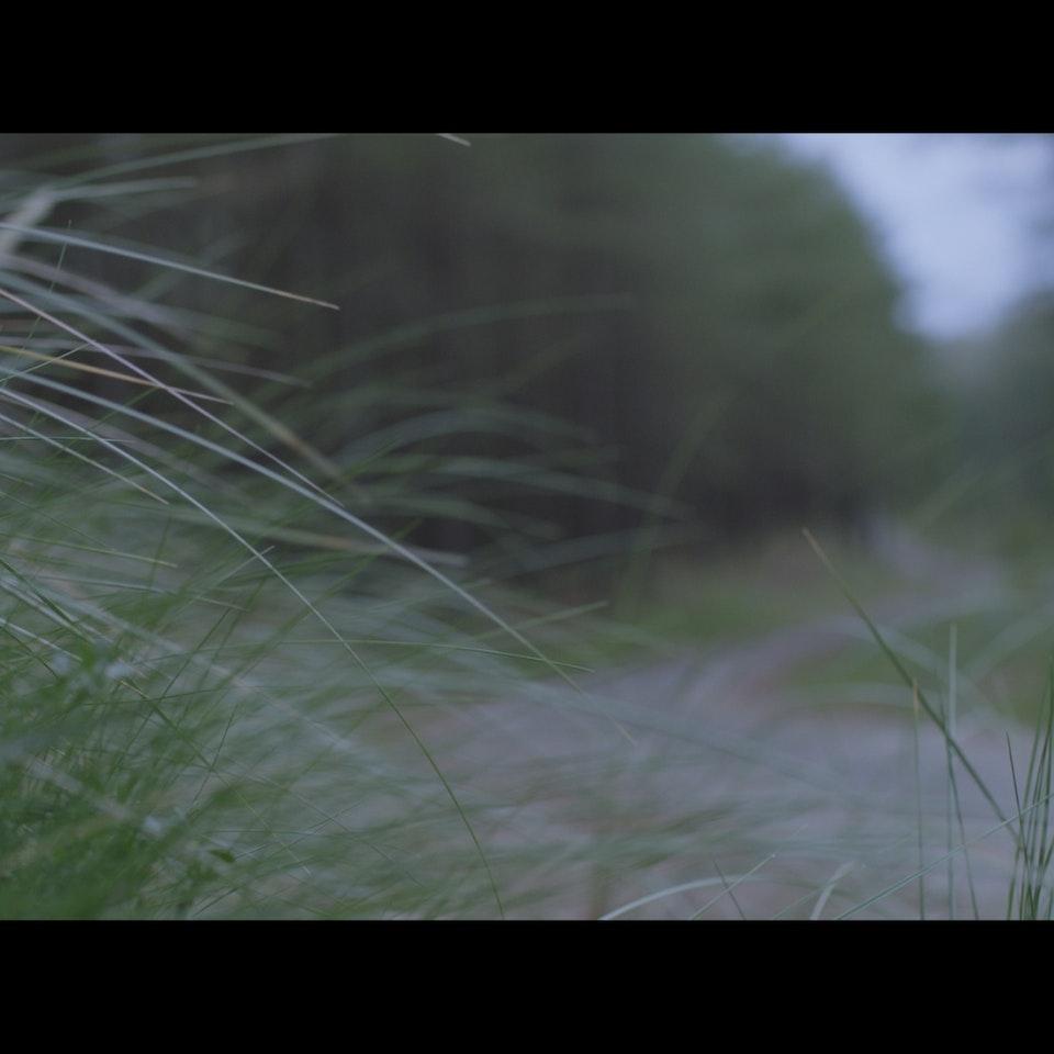 FILM STILLS - Untitled_1.3.95