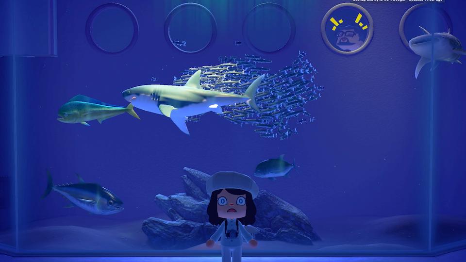 Nintendo Animal Crossing - Screenshot 2020-11-12 at 11.55.47