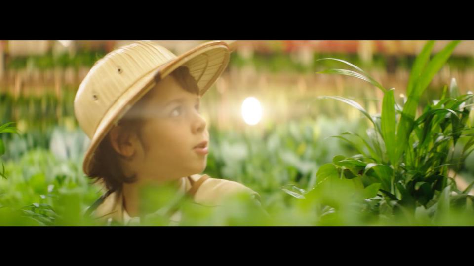 Auchan - National Geographic - Screenshot 2021-09-16 at 12.35.20
