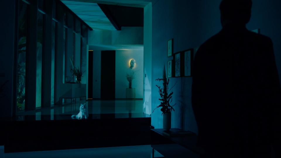 Tranquilidade Galeria - Screenshot 2020-10-17 at 15.13.17