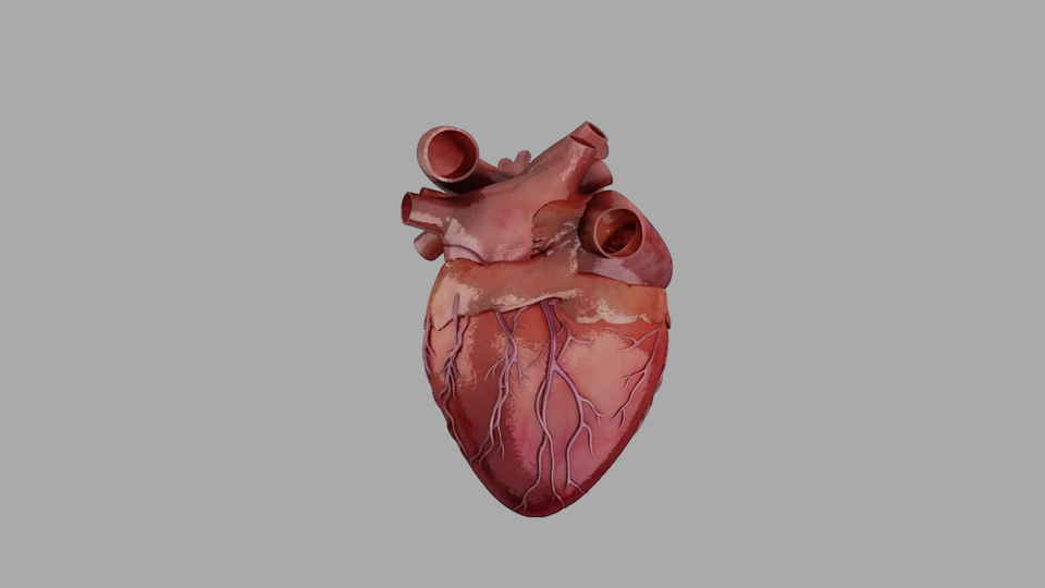Heartworks - Heartworks Heart