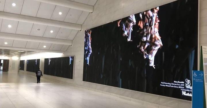 Marcel Duchamp Installation - Westfield World Trade Centre, New York