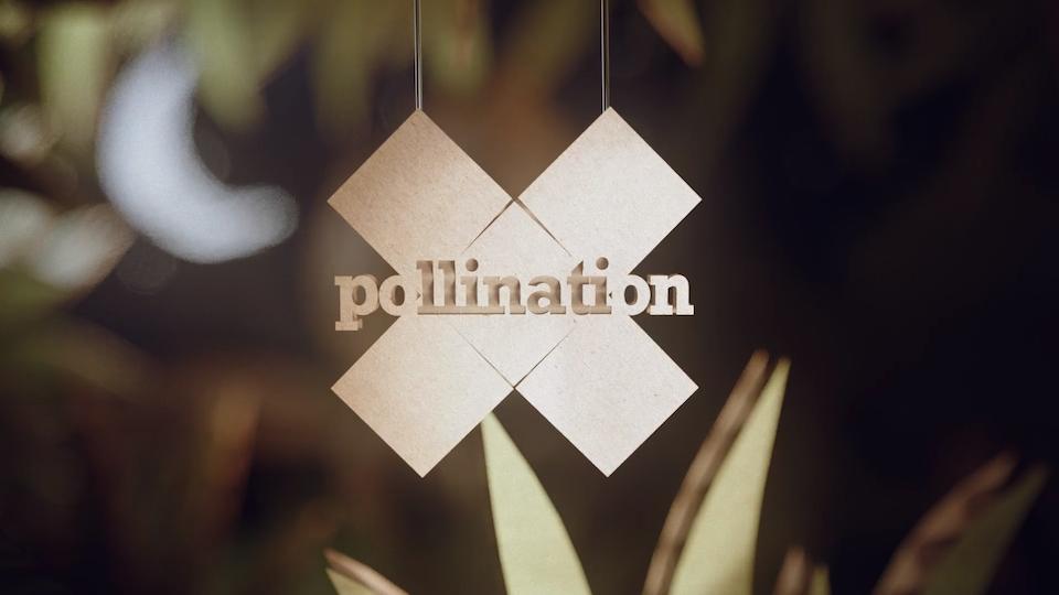 Glassworks - Glassworks Shorts: X-Pollination - 'Jungle' & 'Alaska'